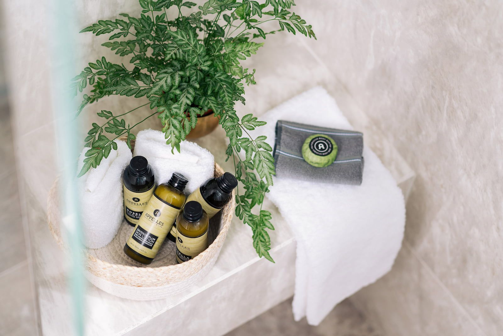 plant and basket of soaps